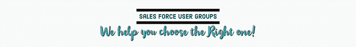 Sales force user groups